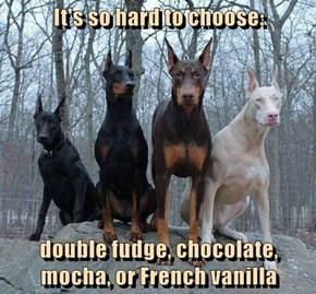 It's so hard to choose:   double fudge, chocolate, mocha, or French vanilla