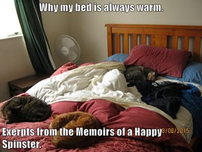 Why my bed is always warm.  Exerpts from the Memoirs of a Happy Spinster.