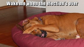 Wake me when the election's over