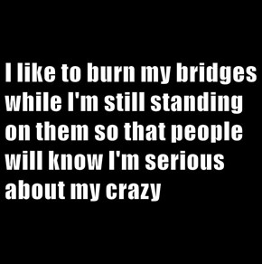 I like to burn my bridges while I'm still standing on them so that people will know I'm serious about my crazy