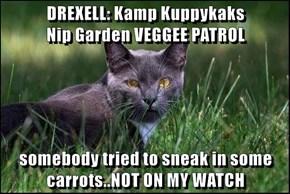 DREXELL: Kamp Kuppykaks                     Nip Garden VEGGEE PATROL  somebody tried to sneak in some carrots..NOT ON MY WATCH