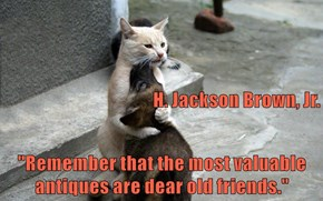 "H. Jackson Brown, Jr.  ""Remember that the most valuable antiques are dear old friends."""
