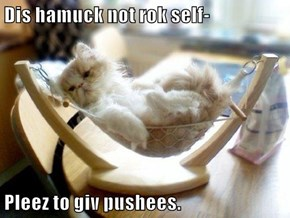 Dis hamuck not rok self-  Pleez to giv pushees.