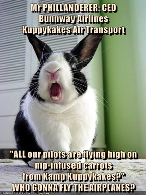 "Mr PHILLANDERER: CEO                          Bunnway Airlines                                         Kuppykakes Air Transport  ""ALL our pilots are flying high on"