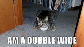 AM A DUBBLE WIDE