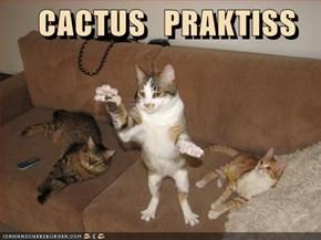 CACTUS   PRAKTISS
