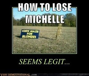 HOW TO LOSE MICHELLE
