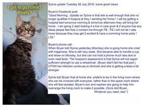 Sylvia update Tuesday 26 July 2016: some good mews