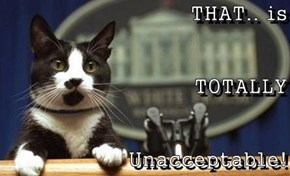THAT.. is TOTALLY Unacceptable!