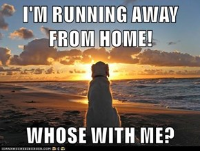I'M RUNNING AWAY FROM HOME!  WHOSE WITH ME?