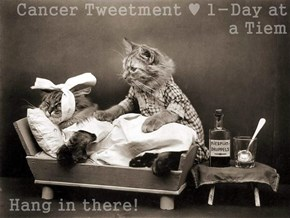 Cancer Tweetment ♥ 1-Day at a Tiem   Hang in there!