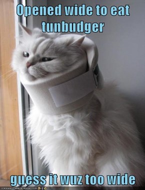 Opened wide to eat tunbudger  guess it wuz too wide