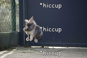 *hiccup      *hiccup      *hiccup