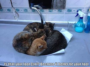 Is that your foot Carl? Because it better be your foot.