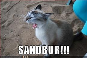 SANDBUR!!!