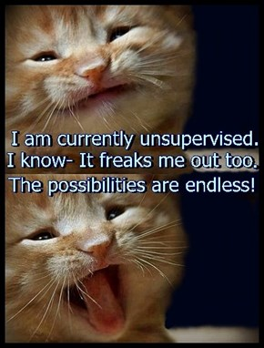 I'm unsupervised and the possibilities are endless!