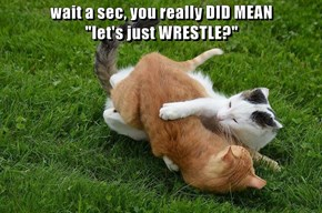 "wait a sec, you really DID MEAN                                                  ""let's just WRESTLE?"""