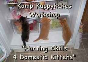 "Kamp Kuppykakes Workshop  ""Hunting Skills                                         4 Domestic Kittehs"""