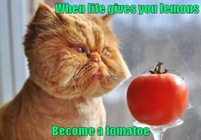 When life gives you lemons  Become a tomatoe
