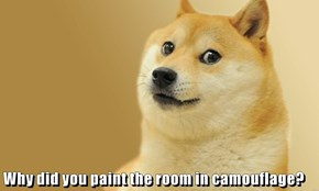 Why did you paint the room in camouflage?