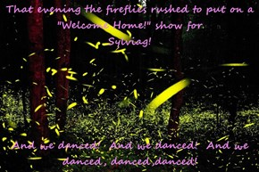 "That evening the fireflies rushed to put on a   ""Welcome Home!"" show for                                              Sylviag!  And we danced!  And we danced!  And we danced, danced,danced!"
