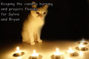 Keeping the candles burning                                                                              and prayers flowing                                            for Sylvia                                               and Bryan