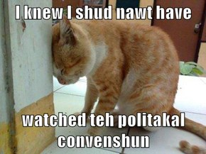 I knew I shud nawt have  watched teh politakal convenshun