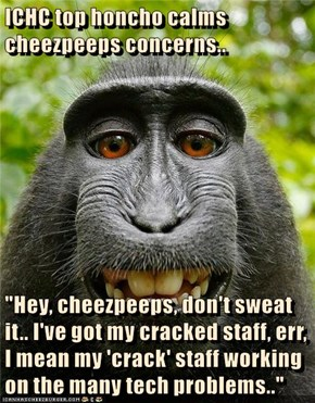 "ICHC top honcho calms cheezpeeps concerns..  ""Hey, cheezpeeps, don't sweat it.. I've got my cracked staff, err, I mean my 'crack' staff working on the many tech problems.."""