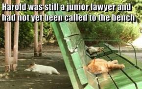 Legal puns...