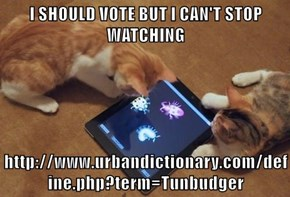 I SHOULD VOTE BUT I CAN'T STOP WATCHING  http://www.urbandictionary.com/define.php?term=Tunbudger