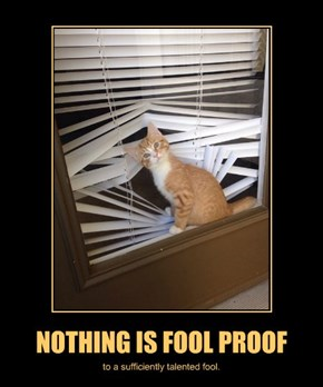 NOTHING IS FOOL PROOF