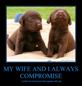 MY WIFE AND I ALWAYS COMPROMISE