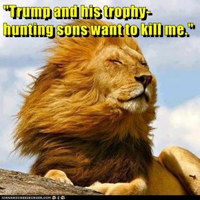 """Trump and his trophy-hunting sons want to kill me."""