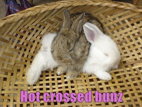 Hot crossed bunz