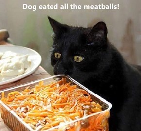 Dog eated all the meatballs!
