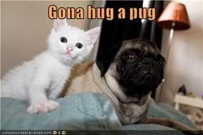 Gona hug a pug