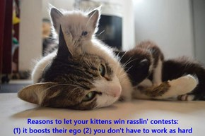 Reasons to let your kittens win rasslin' contests:                                        (1) it boosts their ego (2) you don't have to work as hard