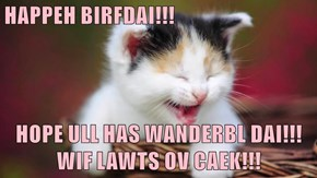 HAPPEH BIRFDAI!!!   HOPE ULL HAS WANDERBL DAI!!! WIF LAWTS OV CAEK!!!