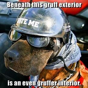 Beneath this gruff exterior  is an even gruffer interior.