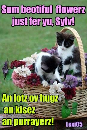 Sum beotiful  flowerz just fer yu, Sylv!