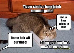Freelance baseball kamper