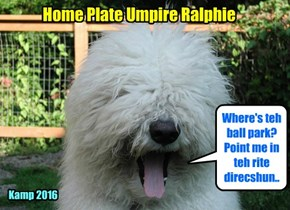 """Ralphie wer selected to be teh Home Plate Umpire cuz hims had teh lowdest voise an' when hims shouted """"STRIKE THREEEE! YUR OWT!"""" no one dared complain!"""