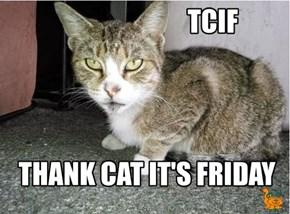 Thank Cat it's Friday!!