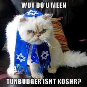 WUT DO U MEEN   TUNBUDGER ISNT KOSHR?