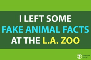 A Comedian Planted Fake Animal Facts All Over the LA Zoo and They Are Hilarious