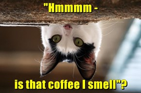 """Hmmmm -  is that coffee I smell""?"