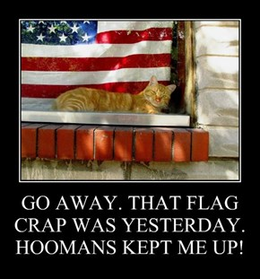 GO AWAY. THAT FLAG CRAP WAS YESTERDAY. HOOMANS KEPT ME UP!