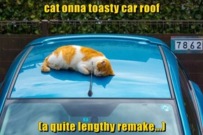 cat onna toasty car roof  (a quite lengthy remake...)