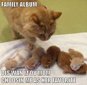 NATURALLY Mom Chose Me As Her Favorite: I'm The Cutest Of The Litter!