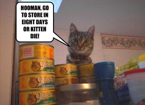HOOMAN, GO TO STORE IN EIGHT DAYS OR KITTEH DIE!